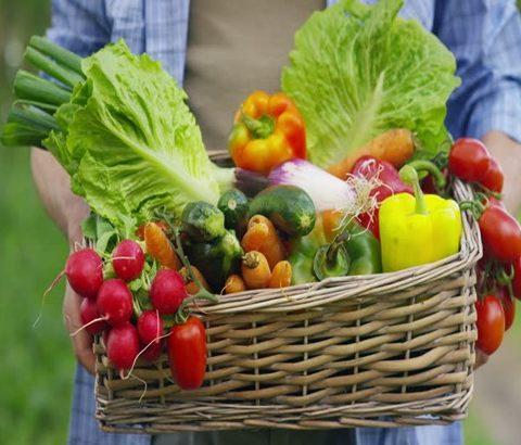Plaasvars groente & vrugte mandjie – R200 (eintlik waarde is R300)